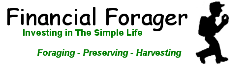 Financial Forager